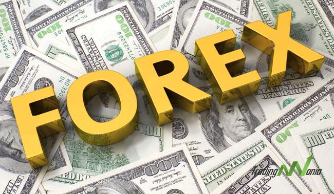 professione-forex-diventare-trader